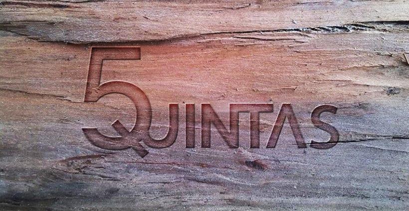 CINCO QUINTAS 0