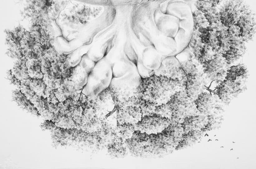Flora intestinal -1