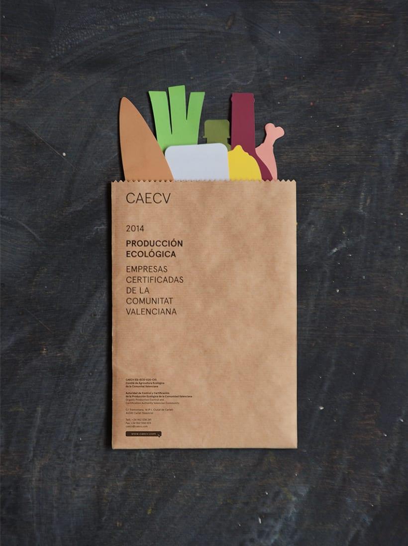 CAECV 1