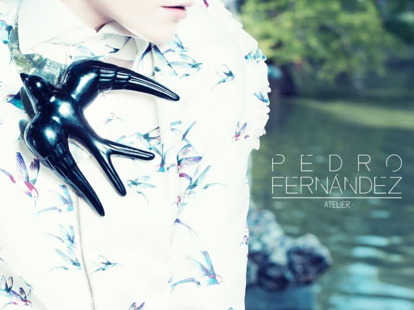 Pedro Fernández 2
