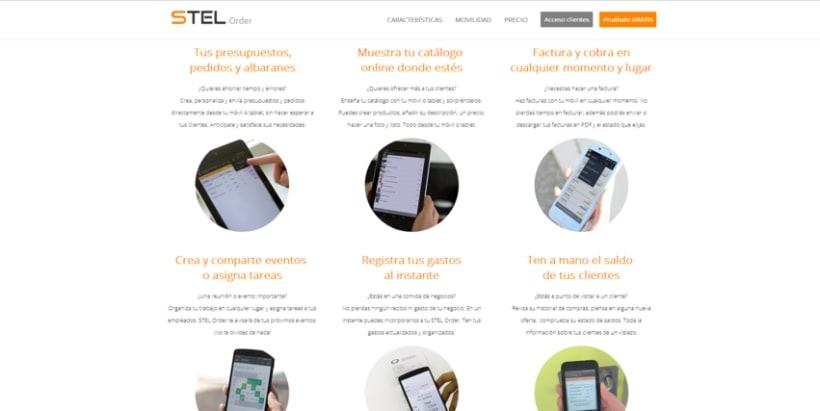 Página web de STEL Order 0