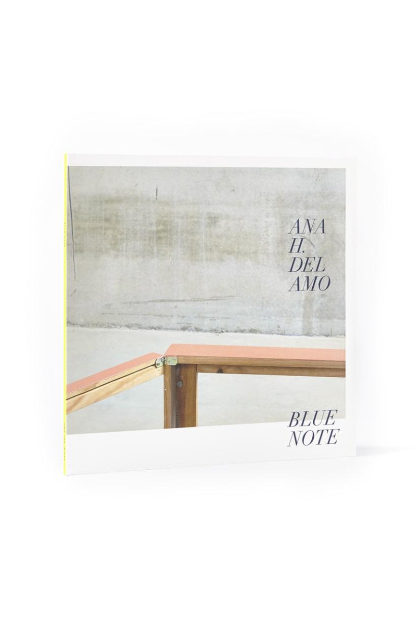 Catálogo exposición Ana H. del Amo, Blue Note 0