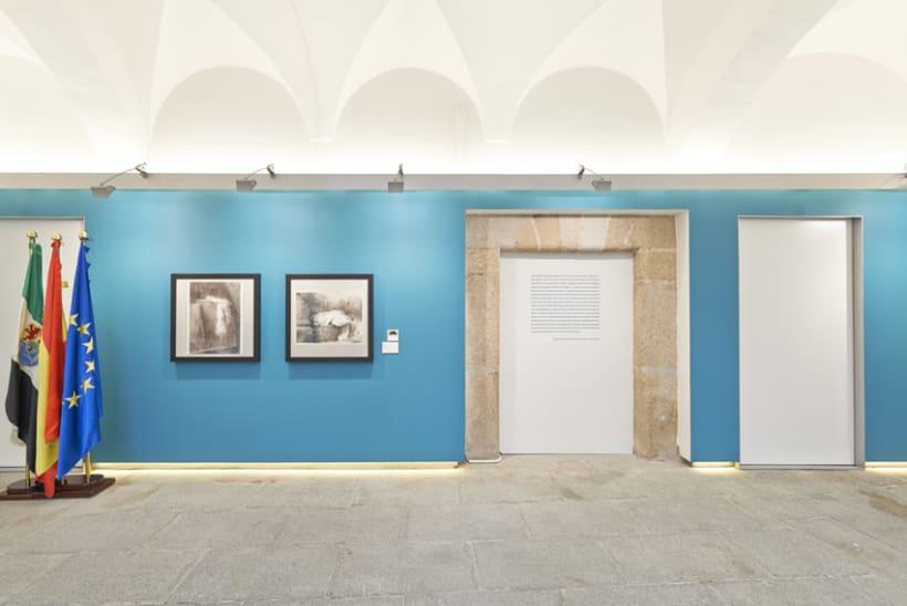 Diseño expositivo Doce artistas en el Museo del Prado 0