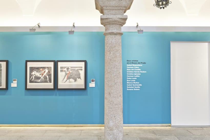 Diseño expositivo Doce artistas en el Museo del Prado 1