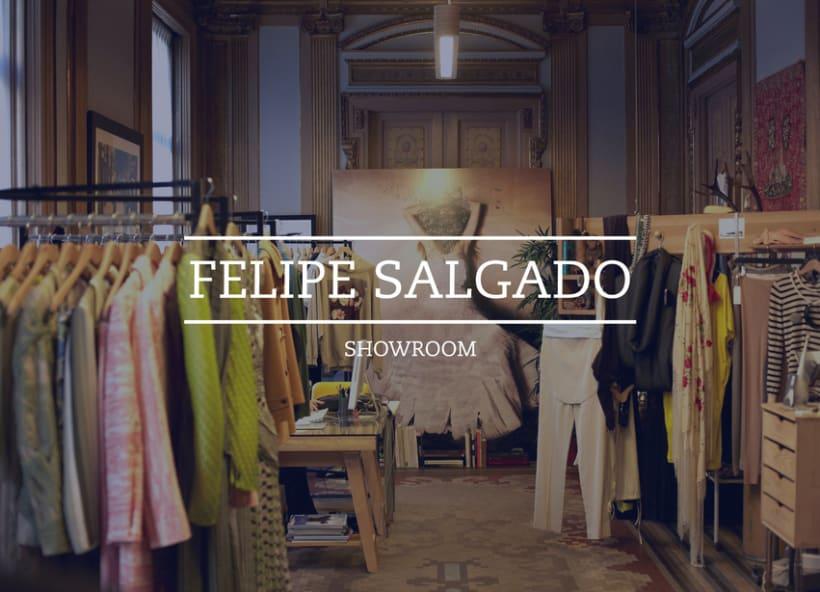 Felipe Salgado Showroom / Branding 0