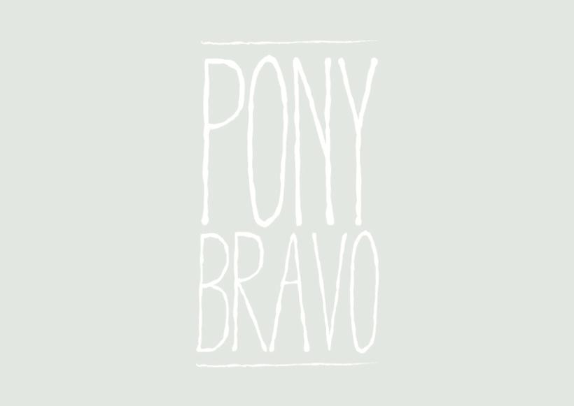 PONY BRAVO - VINILO 3