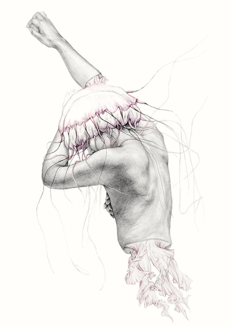 Metamorfish 4