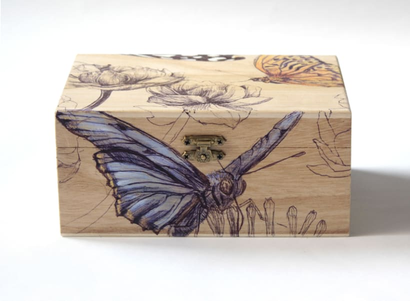 Butterfly box -1