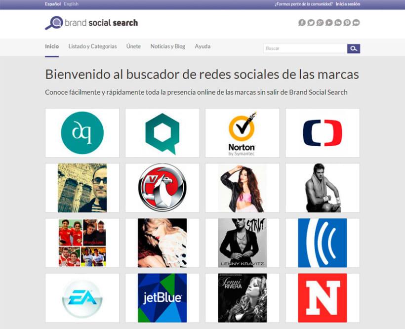 Brand Social Search 0