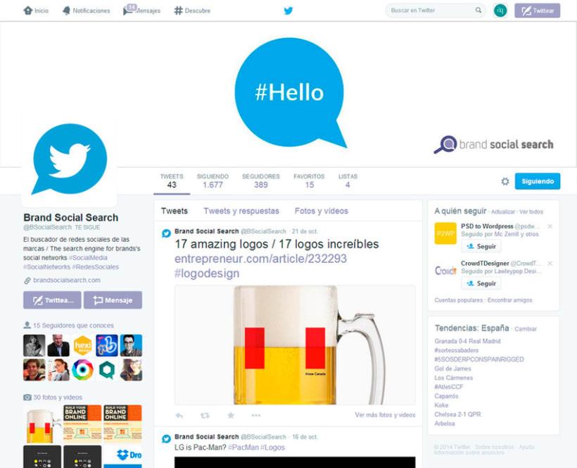 Brand Social Search 5
