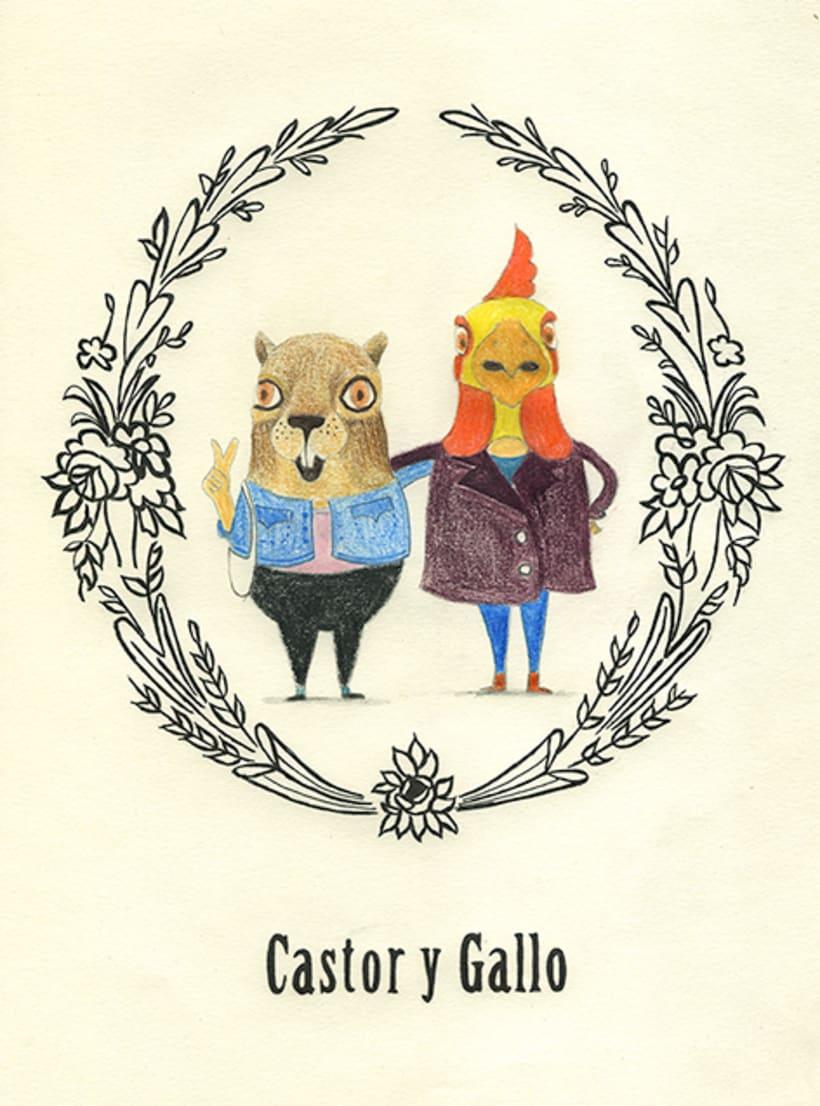 Castor y Gallo 0