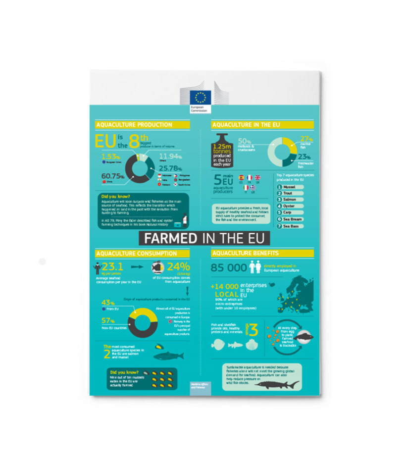 Infographics Design 1