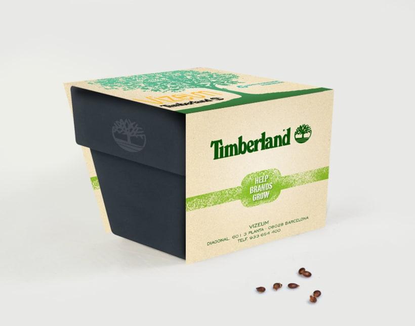 Timberland / Carat -1
