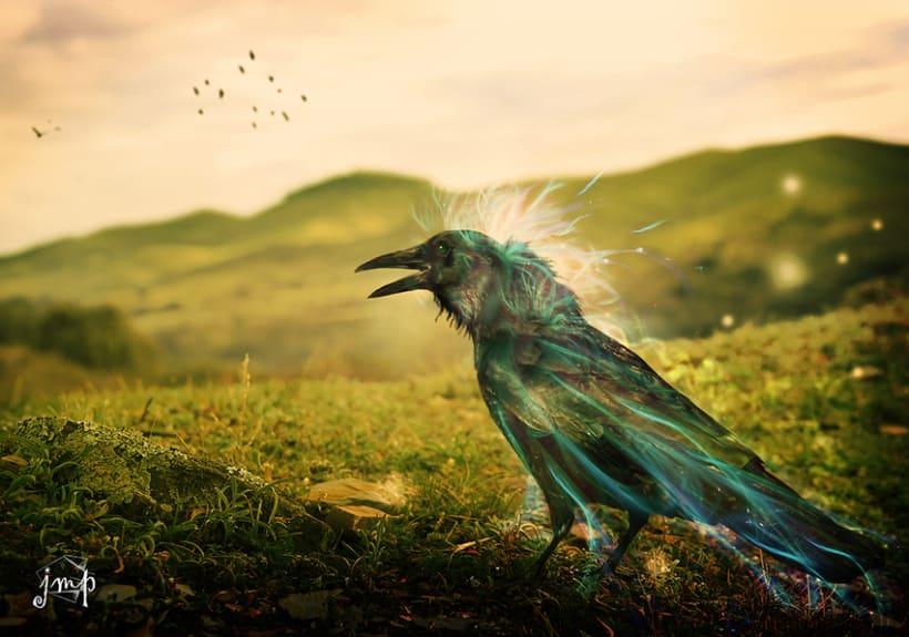 Cuervo en el paraíso 0