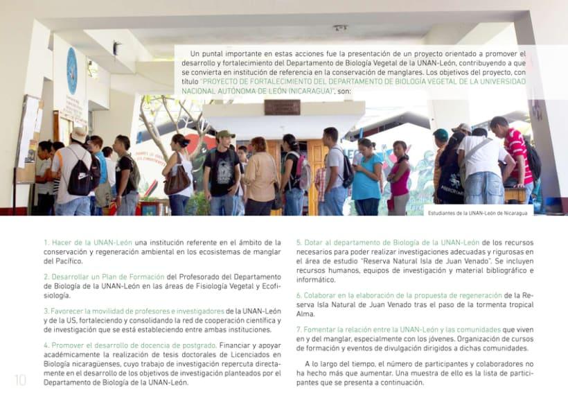 A pie de manglar. Diseño editorial 4