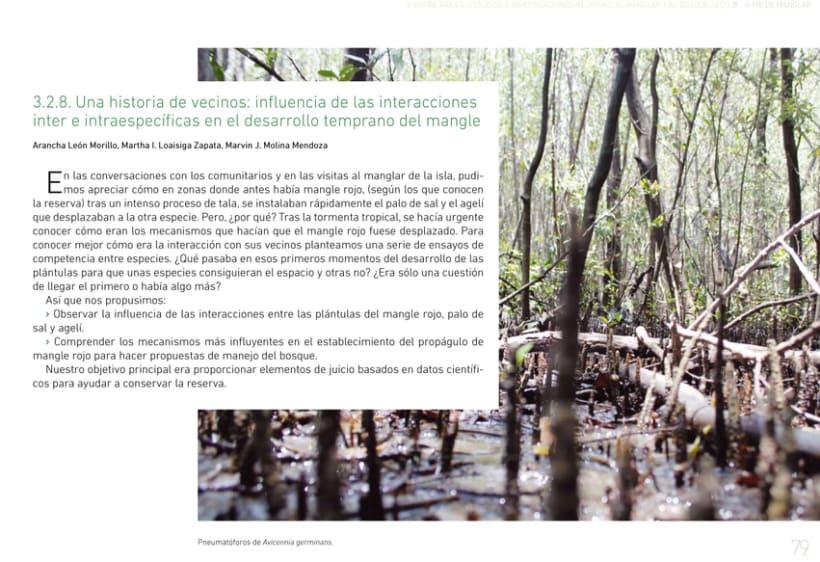 A pie de manglar. Diseño editorial 10
