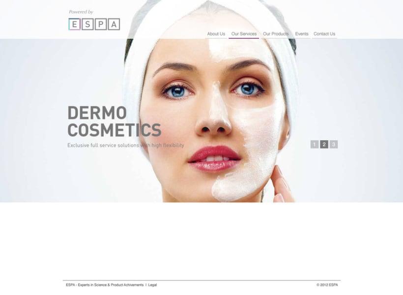 Dermo Cosmetic - Branding & Web Design 9