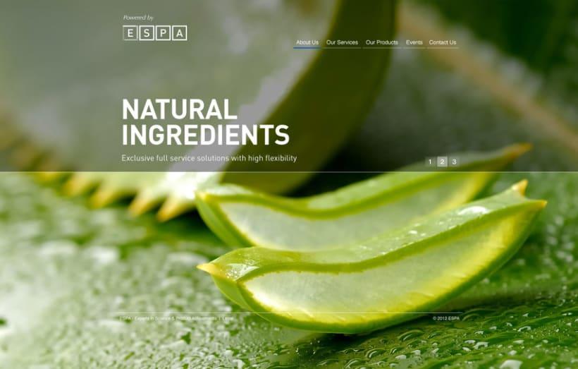 Dermo Cosmetic - Branding & Web Design 13