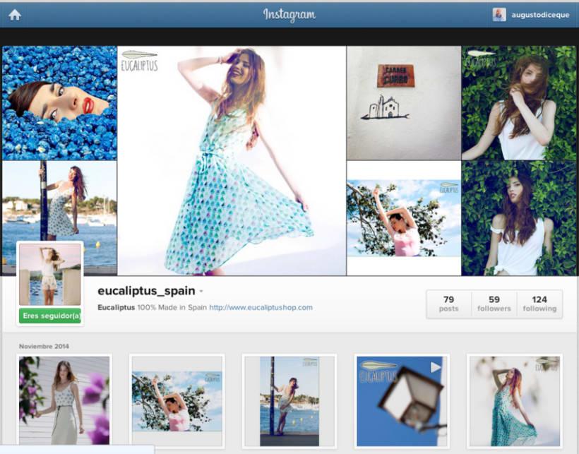 Social Media Branding de Eucaliptus 4