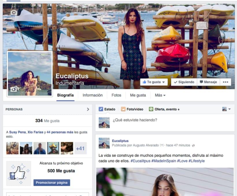 Social Media Branding de Eucaliptus 5