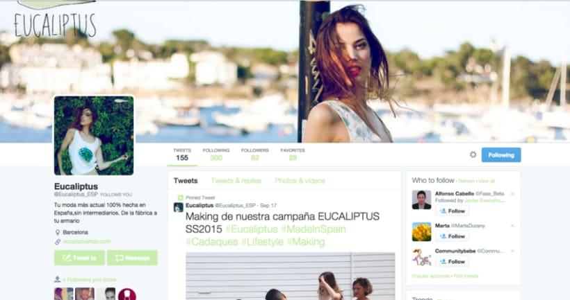 Social Media Branding de Eucaliptus 6