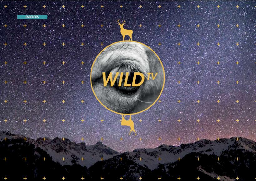 Wild TV 3