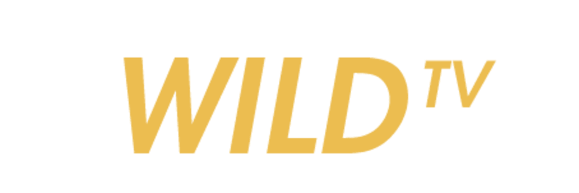 Wild TV 1