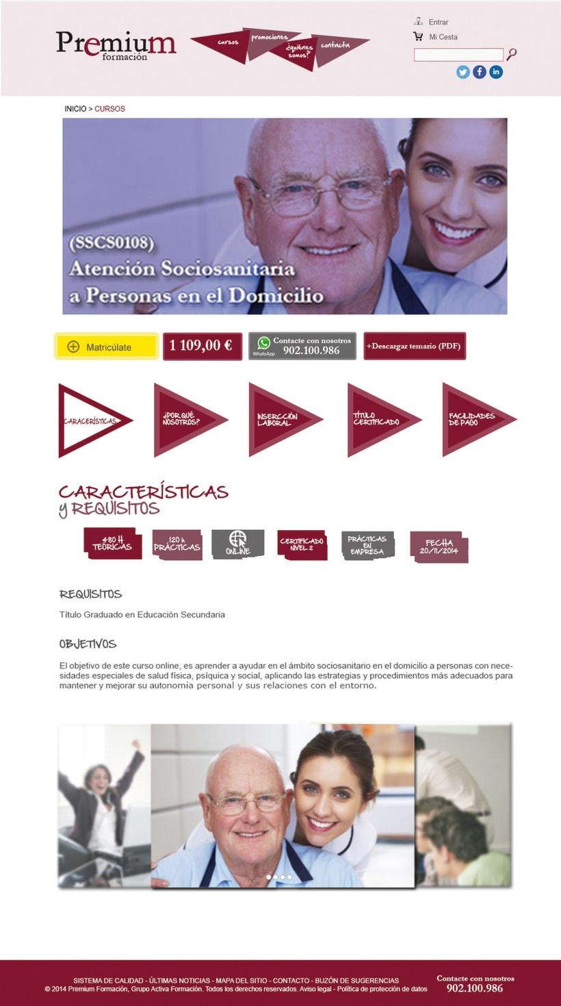 Diseño Web - Premium Formación 1