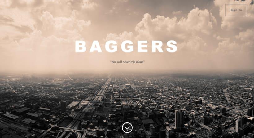 Web Design - Baggers 0
