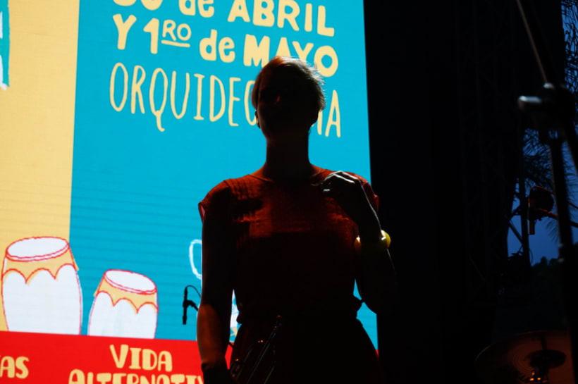 Orquideorama 4