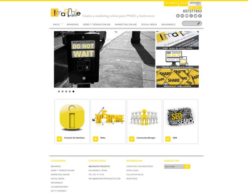Webs-Tiendas Online. Usabilidad. Arquitectura de la información. Redacción SEO. Fotografía 2