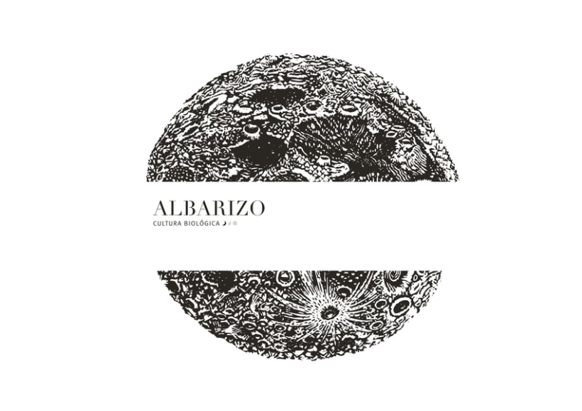 ━  Albarizo vinos  0