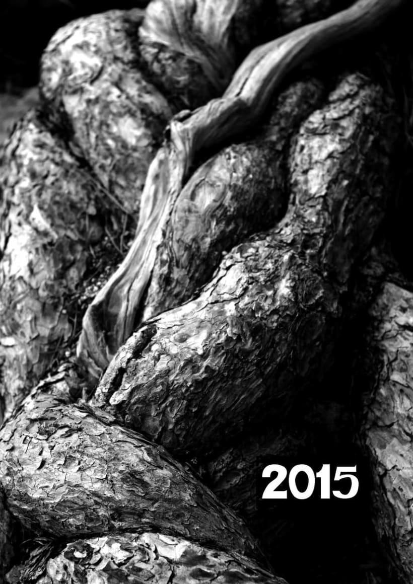 Calendario 2015 0
