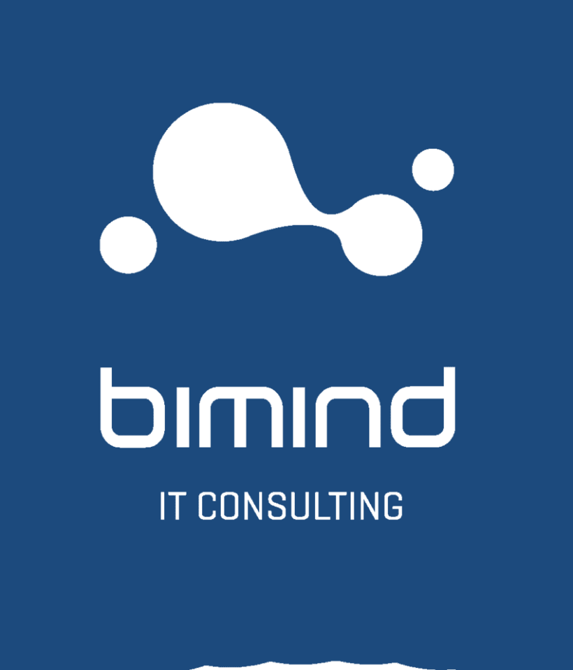 BIMIND IT  -1