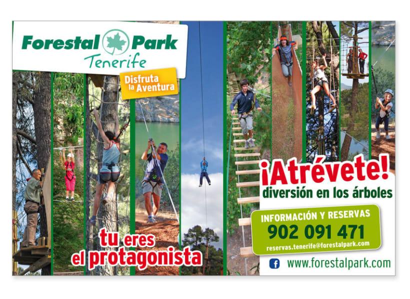 Identidad y Branding: Forestal Park 16