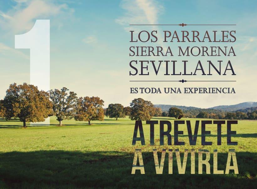 Los Parrales| Packaging  para Cordero Ecológico  1
