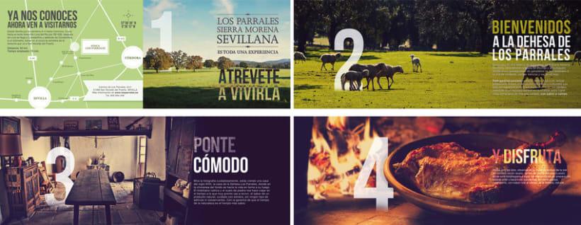 Los Parrales| Packaging  para Cordero Ecológico  5
