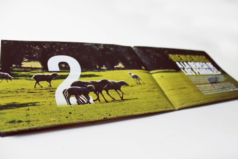 Los Parrales| Packaging  para Cordero Ecológico  8