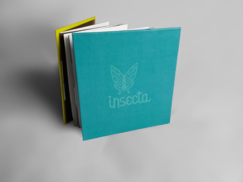 Insecta (Libro-Desplegable) 4