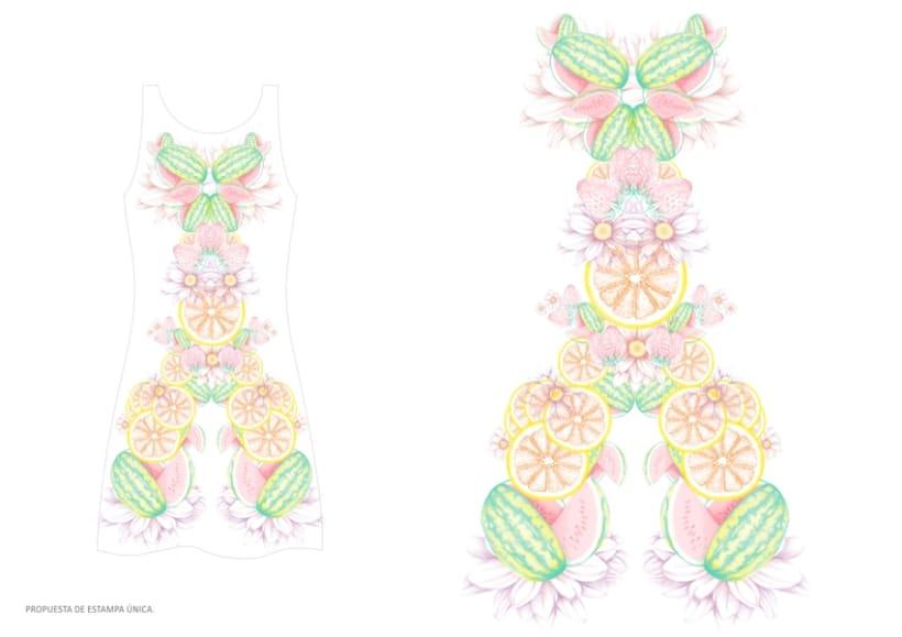 diseño & desarrollo de estampados textiles / ilustración / 2014 1