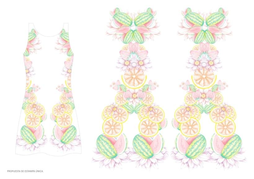 diseño & desarrollo de estampados textiles / ilustración / 2014 2