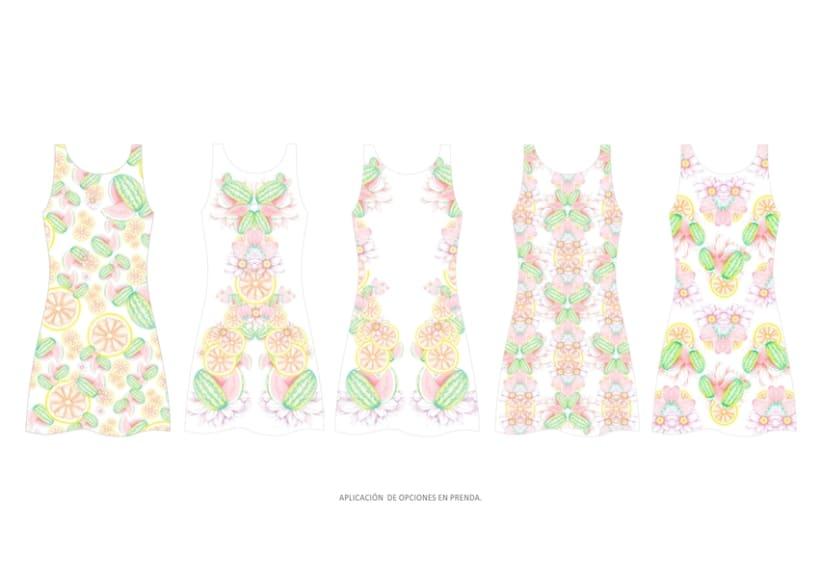 diseño & desarrollo de estampados textiles / ilustración / 2014 5