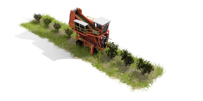 Establecimiento Las Marías (Argentina) - Elaboración de la yerba mate 13