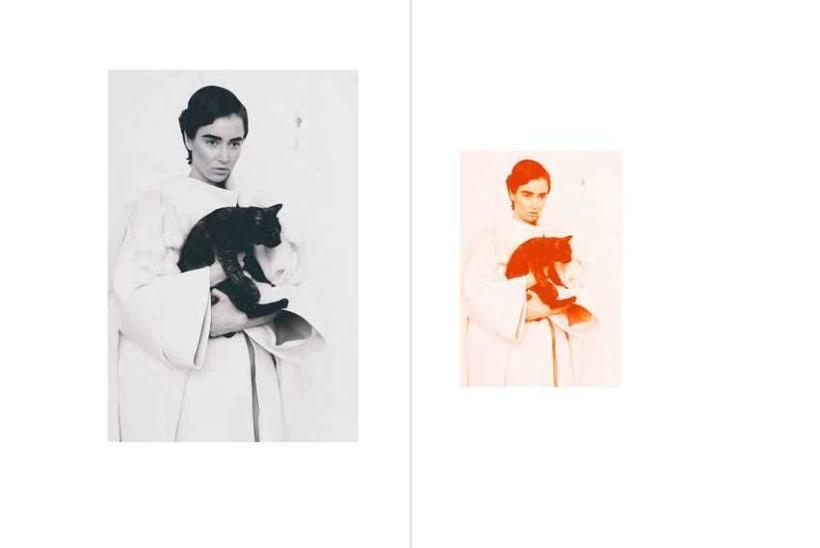 Lapin Kulta (Proyecto final de moda) 3