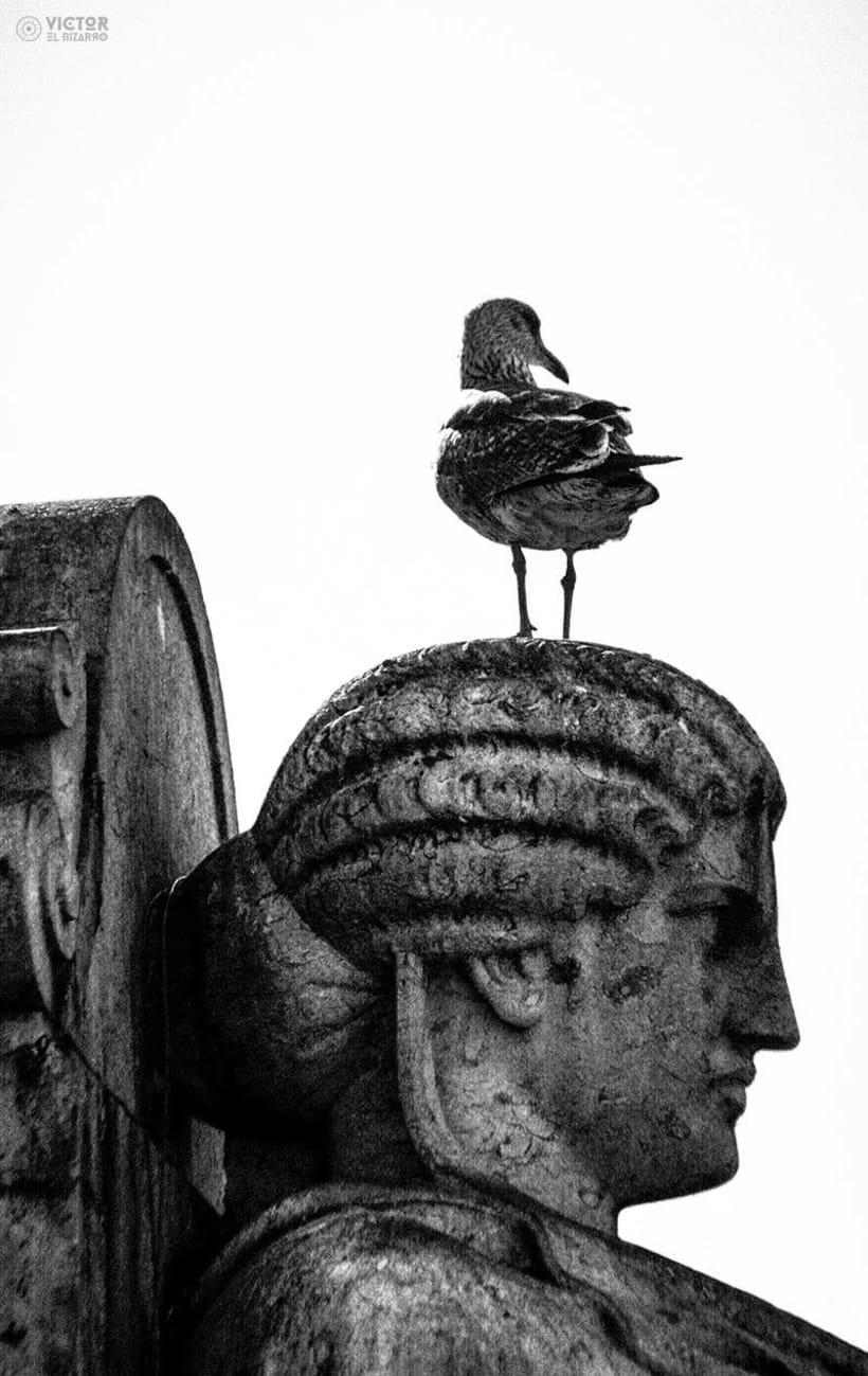 Fotografías de Lisboa y Sintra (Portugal) 10