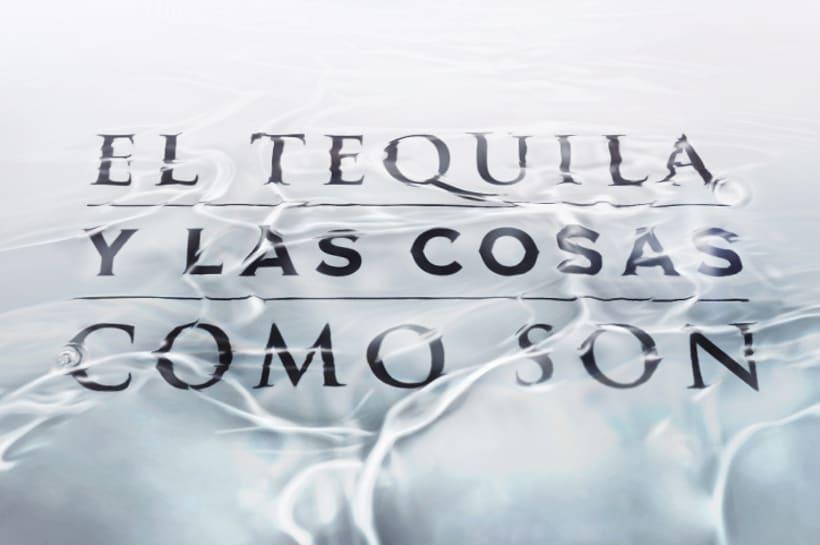 Tequila Herradura 10