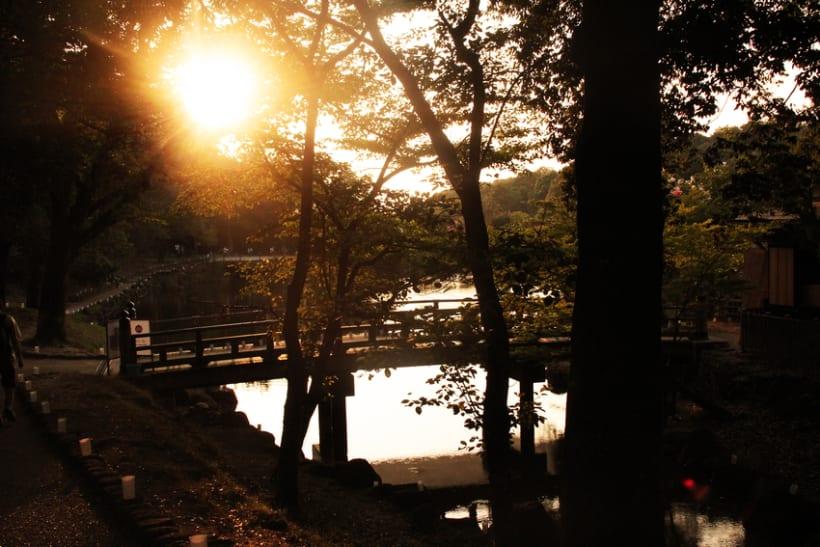 LUGARES DEL MUNDO: JAPÓN 4