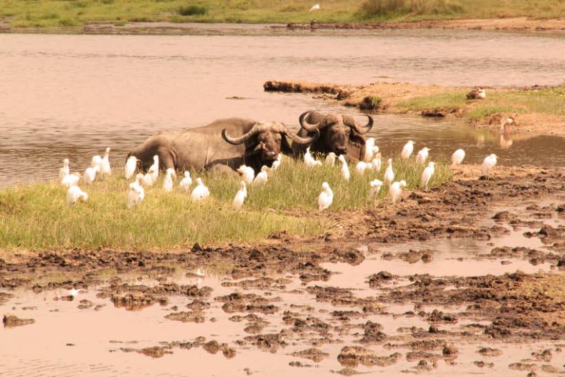 LUGARES DEL MUNDO: KENIA 2