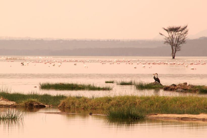 LUGARES DEL MUNDO: KENIA 3