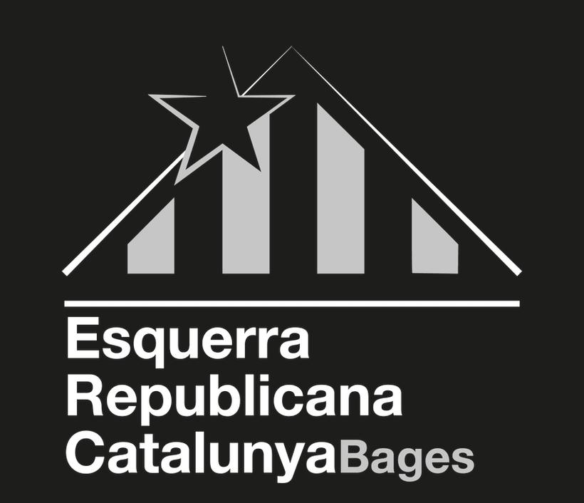 Concurs Logotip ERC 6